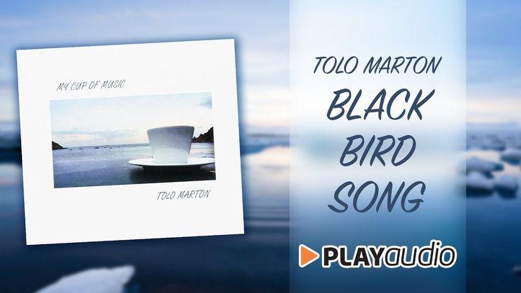 Blackbird Song - My Cup Of  Music - Tolo Marton - PLAYaudio