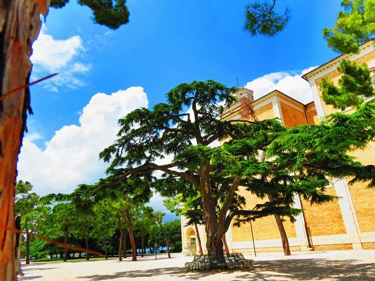 Fermo, Marche, Italy - Duomo, Piazzale Girifalco by Gianni Del Bufalo (CC BY-NC-SA 2.0)इटली  意大利 Italujo イタリア Италия איטאליע إيطاليا