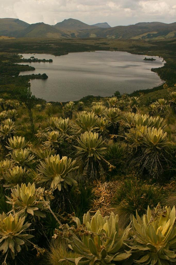 Colombia - Laguna Verde de Tausa, municipio de Cundinamarca, ubicado en la Provincia de Ubaté.