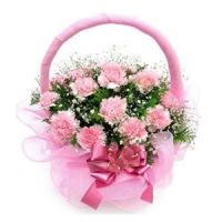 http://www.sofiaraj.com/flowers/send_pink_carnations_online