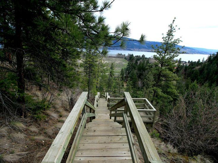 The Stairway to Waterfall Heaven