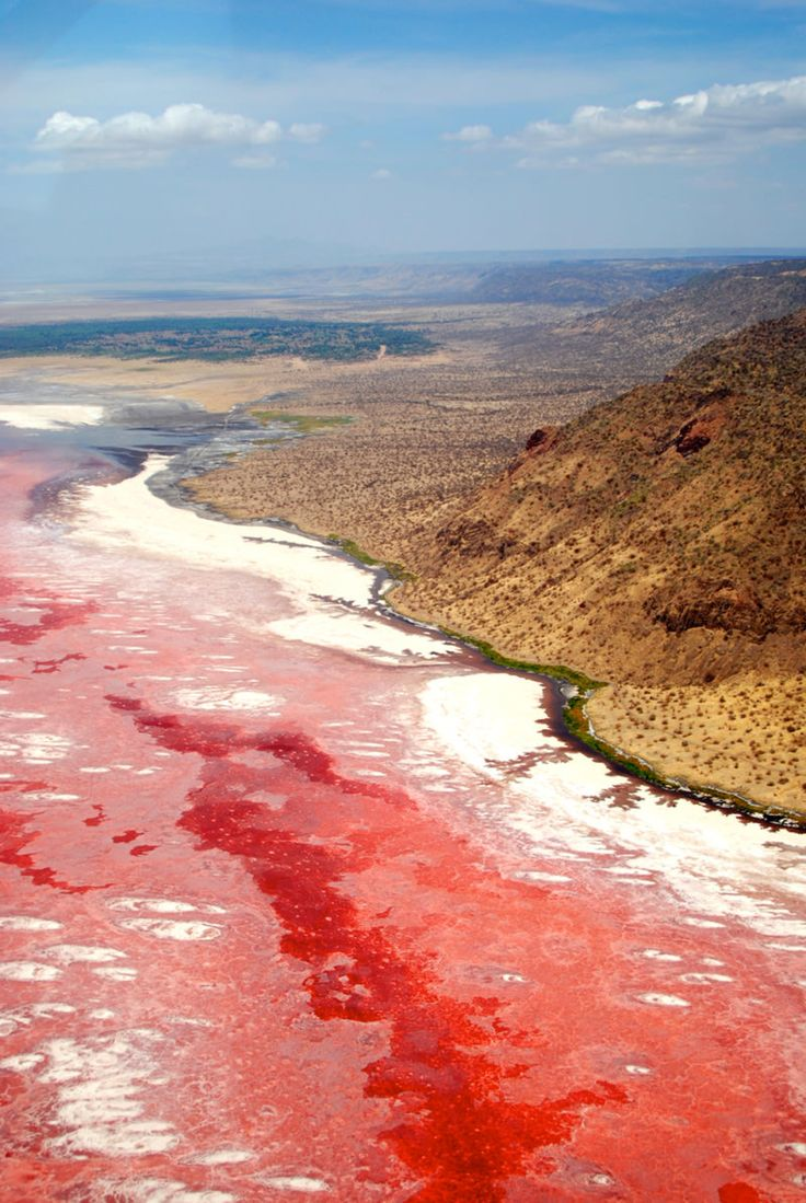 The pink petrifying waters of lake Natron, Tanzania - Tails of Wonders