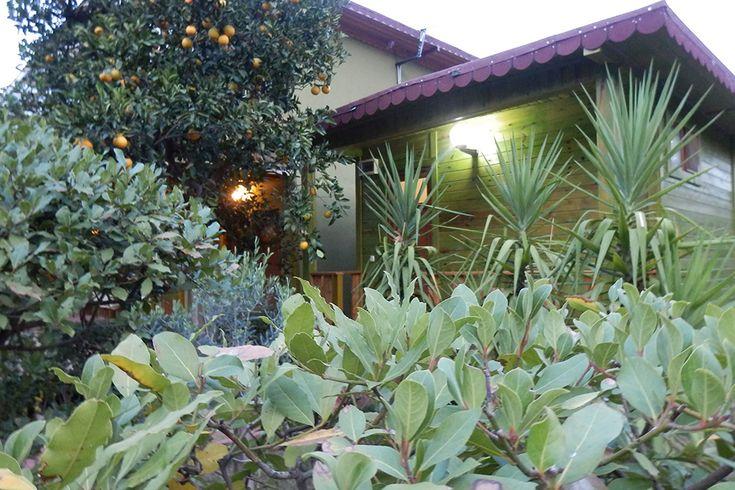 Orange Motel è un piccolo motel, a conduzione familiare boutique. Il motel si trova in un luogo tranquillo e pacifico,  tra una grande varietà di fiori e piante, in armonia con la natura, all'interno di un ampio giardino degli aranci.  #cirali#ciralihotel #ciralipension #ciralihostels #pension #hostel #lodge #ciralilodge #layover #urav #antalyahotels #antalyapension #antalyalodge #antalya  #mediterranean #chimera #ciraliapart #antalyaapart #bungalow