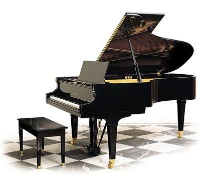 black piano~