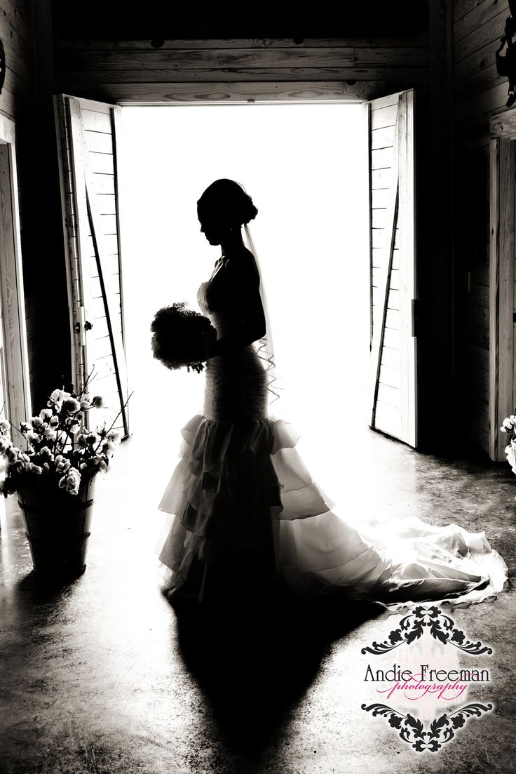 Silhouette bridal portrait. Rustic Barn Wedding. Photography: www.TheAthensWeddingPhotographer.com  Planning, Floral, and Event Design: www.WildFlowerEventServices.com Venue: Antique Acres