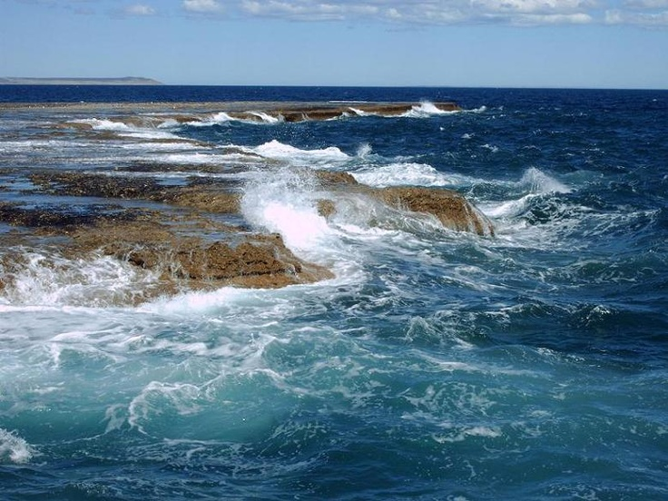 Península de Valdés - Chubut - Argentina