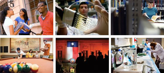 University of Texas, Austin Discusses Photo Style in relation to brand