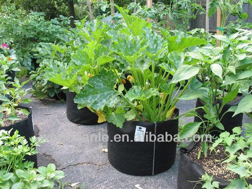 #wall planting bags, #plant watering bag, #vegetable planting bag