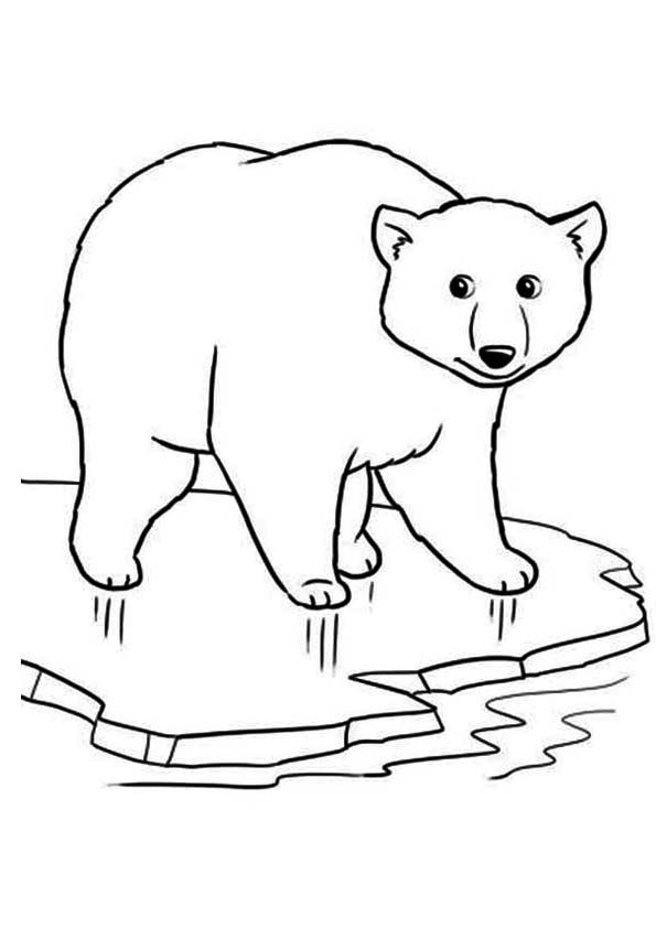 The Polar Bear On Ice Coloring Page In 2020 Polar Bear Coloring Page Bear Coloring Pages Animal Coloring Pages