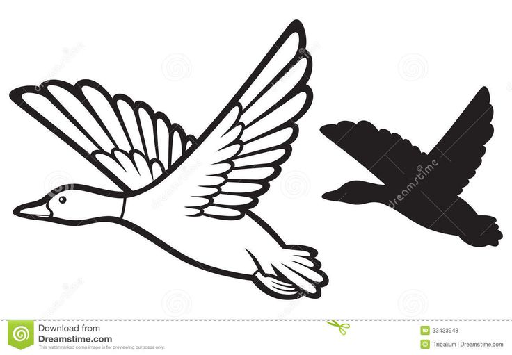 Line Art Duck : Flying duck clipart black and white panda free