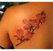 Dogwood Tattoo Picture By Sara0624  Photobucket - maybe run across shoulder and up neck?
