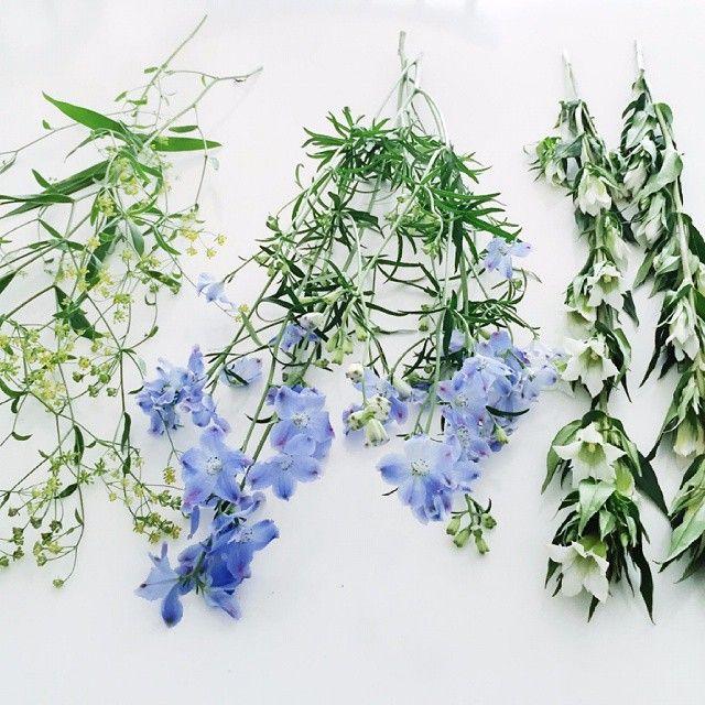 お花って、本当にパワーがあるなあと思います。お花を買って帰るだけで、気持ちがシャンとします。  #北欧暮らしの道具店 #花 #お花 #ザ花部 #花のある暮らし #花のある生活