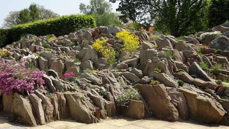 Forum Ogrodnicze Oaza :: Topic: Wisley - ogród Królewskiego Towarzystwa Ogrodniczego (2/2)
