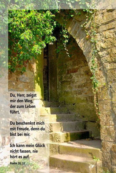 Du, Herr, zeigst mir den Weg, der zum Leben führt. ... Psalm 16, 11