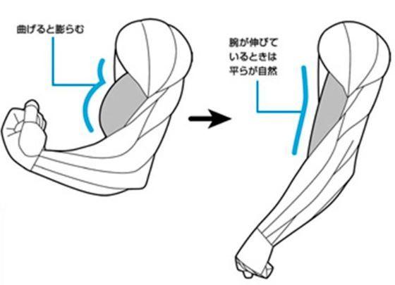 ヒモ男と大工ではぜんぜん違う! 実は奥が深い「男の筋肉の描き方」 - Excite Bit コネタ(2/3)