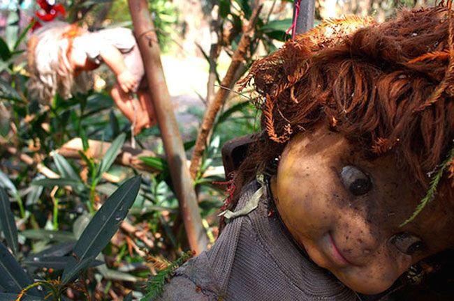 The Dolls Island (Isla de las munecas), a creepy place in the warm Mexico... #dollsisland #isaldelasmunecas #isoladellebambole