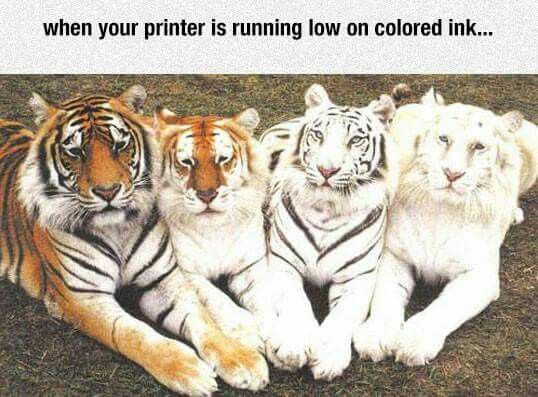 When your printer is running low on ink