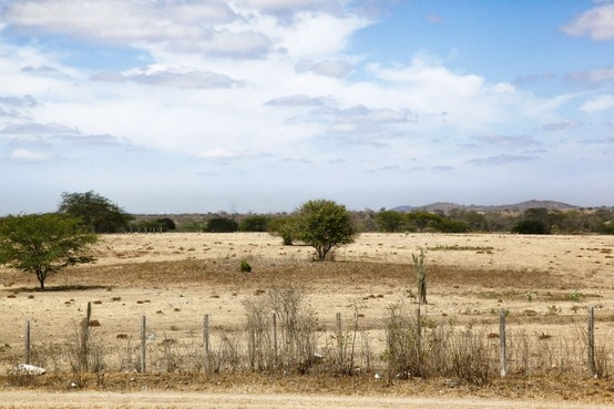 Photo by Gilberto Grosso - A landscape dominated by drought inclement 6