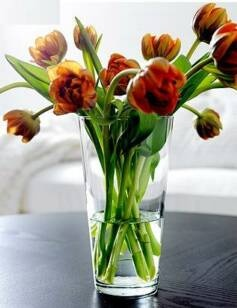 simple flowers and vase