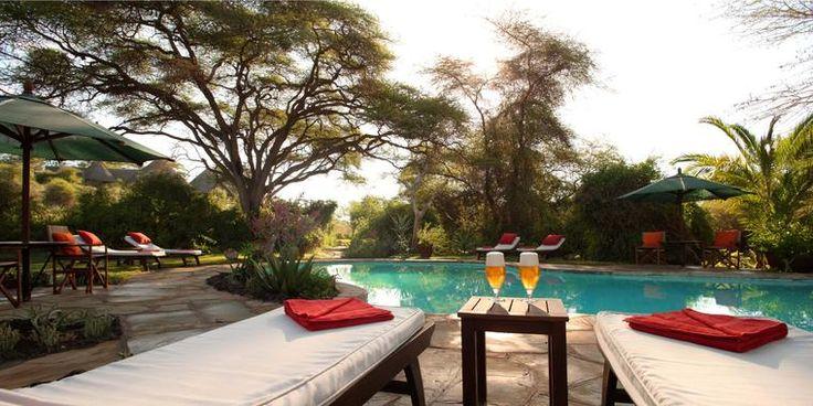The Tortilis camp in Amboseli National Park, Kenya is your first camp on this Trek Safari and offers the best Mt. Kilimanjaro views in the world! Visit http://treksafaris.com for more info! #travel #africa #kenya #safari #africansafari