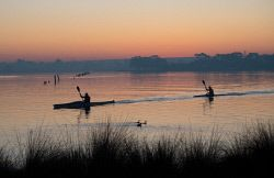 TWA-0044496 © WestPix Kayakers enjoying a morning paddle on the Canning River in Shelley. Pic Mogens Johansen, The West Australian