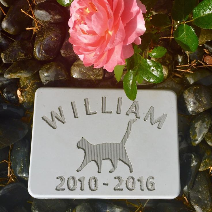 Memorial Marker - Medium Sized Cement Gravestone for a Cat.