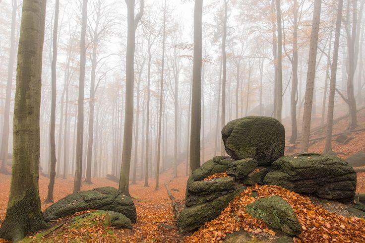 Podzimní krajina Jizerských hor