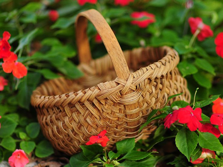 Basket Weaving Vancouver Bc : Best images about amy baskets on