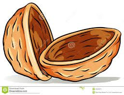 Image result for noce clipart
