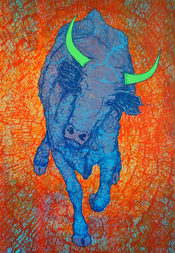 Jonasz Koperkiewicz: Bull