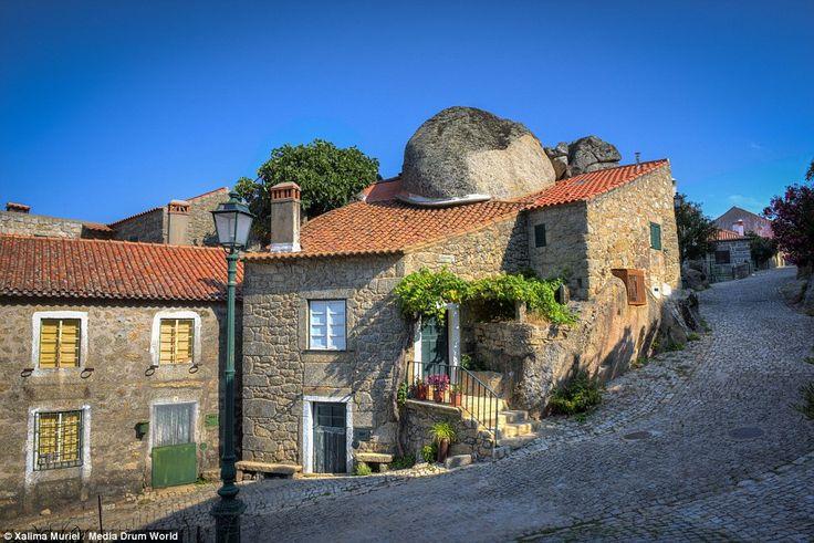 monsanto portugal - Căutare Google