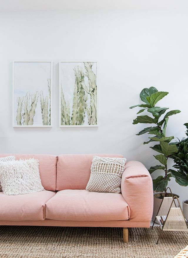 Pink Sofa And Green Plants