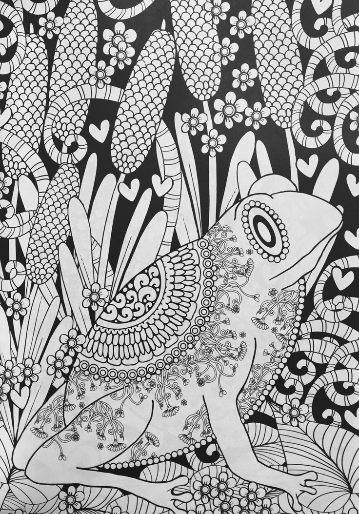 Adult Coloring Pages Books Animal Design Forests Amazons