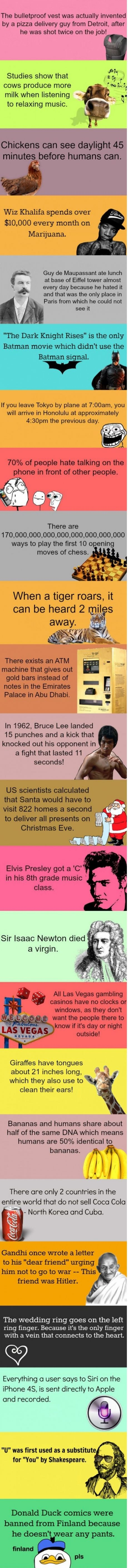 Just some facts, moral of the story.... Bruce Lee is awesome :D