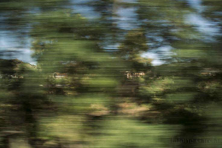 A través de los cristales del tren, se conocen los lugares de otra manera. Paisajes impresionistas pasan delante de nuestros ojos. Los contornos se desdibujan, las cosas permanecen sólo un segundo ante los ojos, los árboles vuelan, intuyes formas, imaginas paisajes….. buscar retener un segundo sumidos en la velocidad. Metáfora de un viaje.