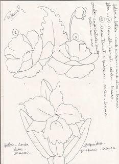 Riscos e Amostras de Flores da Raquel
