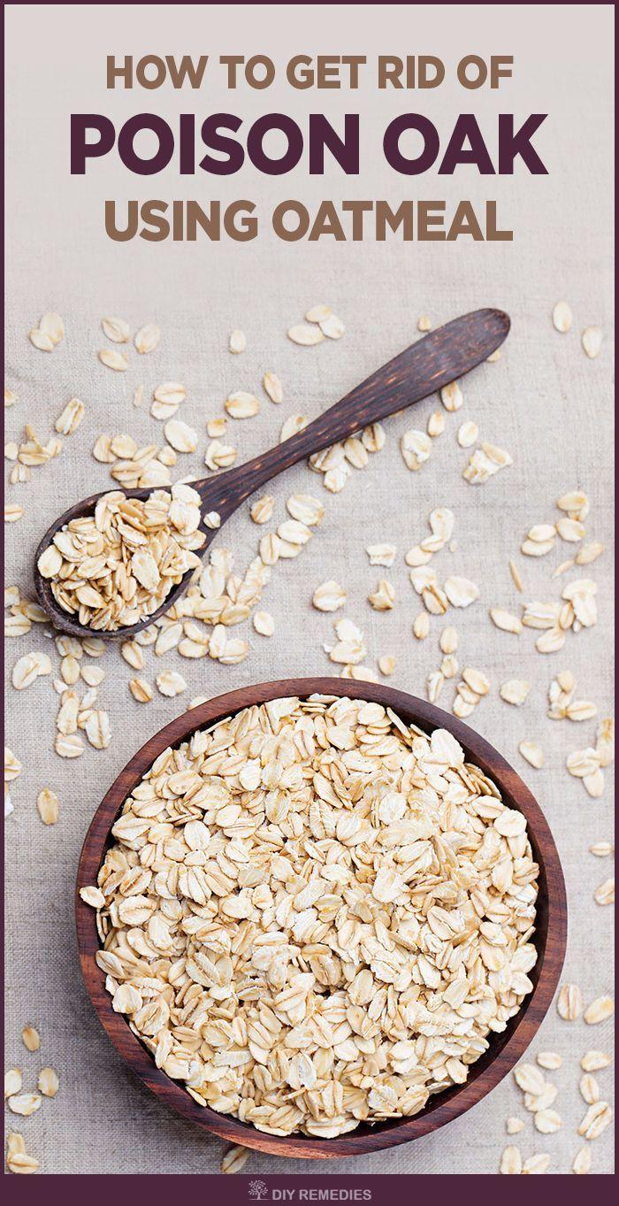How to use Oatmeal for treating Poison Oak    There are many ways of using oatmeal for treating poison oak allergy. Let's get started.  #poisonOakAllergy #Oatmeal