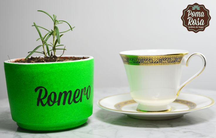 Tu huerta en casa!  Dale a tus ensaladas un toque de sabor mediterráneo con unas hojitas de Romero!