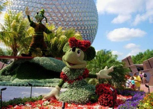 Disney plant sculptures #eccosmile #sculptured65