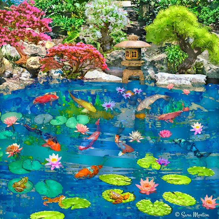 Encircled pool tranquil koi fish pool surrounded by a for Plants suitable for japanese garden