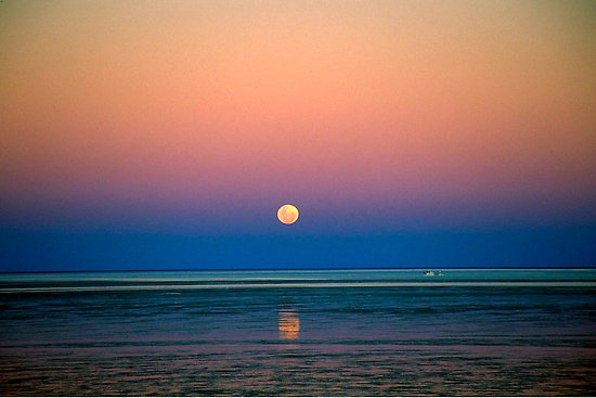 Moonrise #broome #westernaustralia