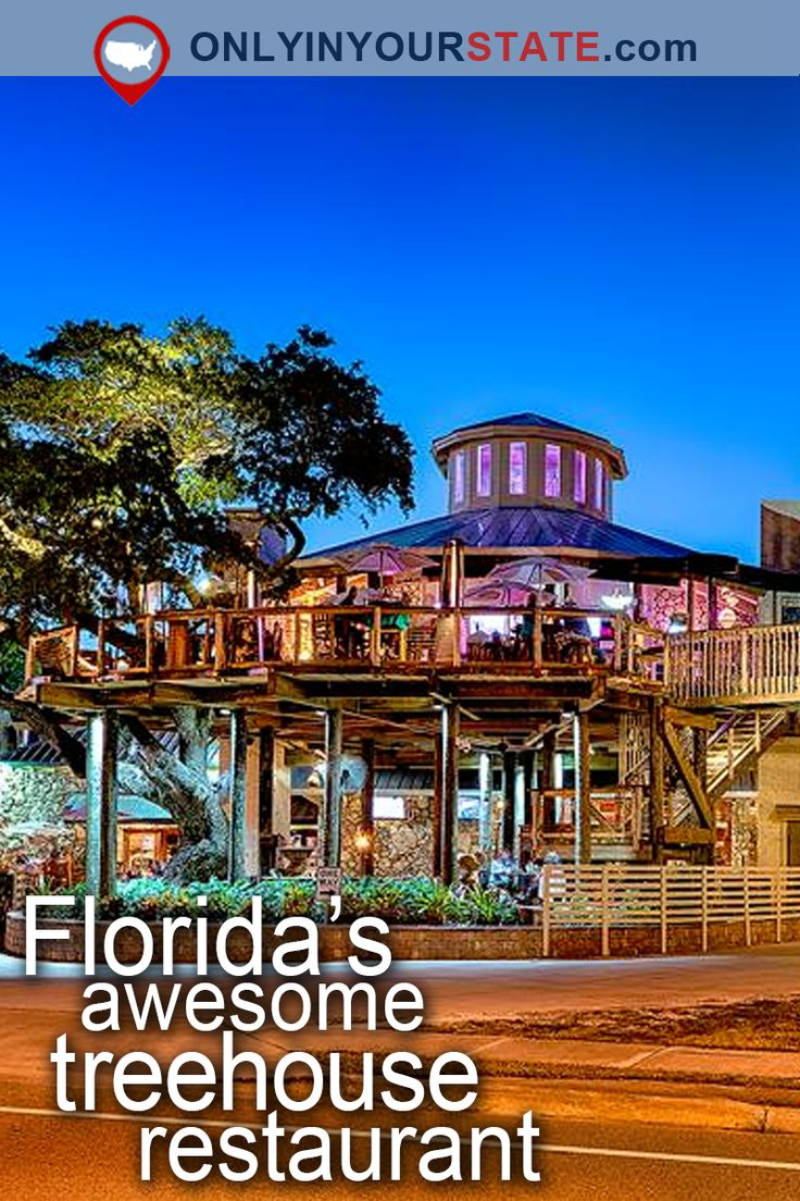Best 25 florida ideas on pinterest florida 2017 for East coast weekend trips