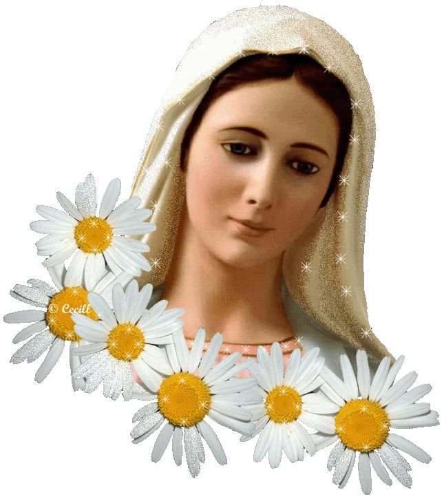 Vidas Santas: Gifs Animados Vigen María