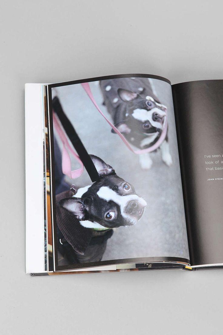 The New York Dog by Rachael Hale McKenna