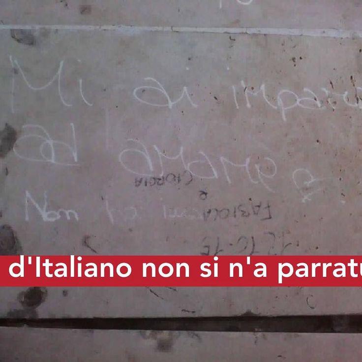 #gentisenzalibbra #cenmanicomiu #catanisi #catania #cataniagram #siciliagram #instacatania