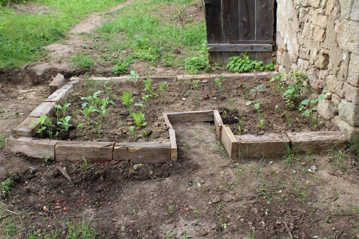 New raised bed from wood - Nový vyvýšený záhon z dreva