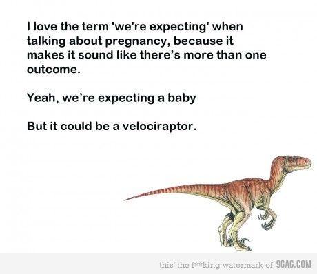 baby dinosaurs :)