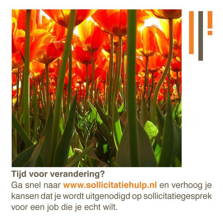 Lente, tulpen, zon. Nieuw seizoen, tijd voor verandering! Op www.sollicitatiehulp.nl helpen we je graag met de zoektocht naar jouw droombaan!