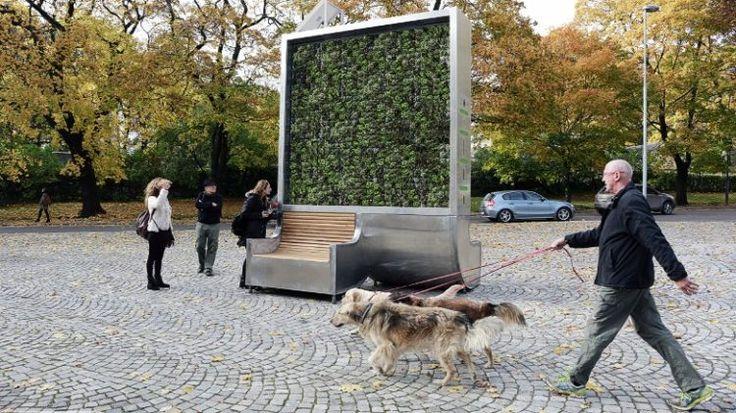 Hemos descubierto un invento alemán, creado por un jardinero, para reducir los riesgos para la salud de la contaminación atmosférica en las ciudades. Se llama CityTree y es un árbol artificial de musgo que absorbe 240 toneladas de CO2 al año, el equivalente a las que absorben 275 árboles naturales. Lacontaminación atmosféricaes responsable de cerca …