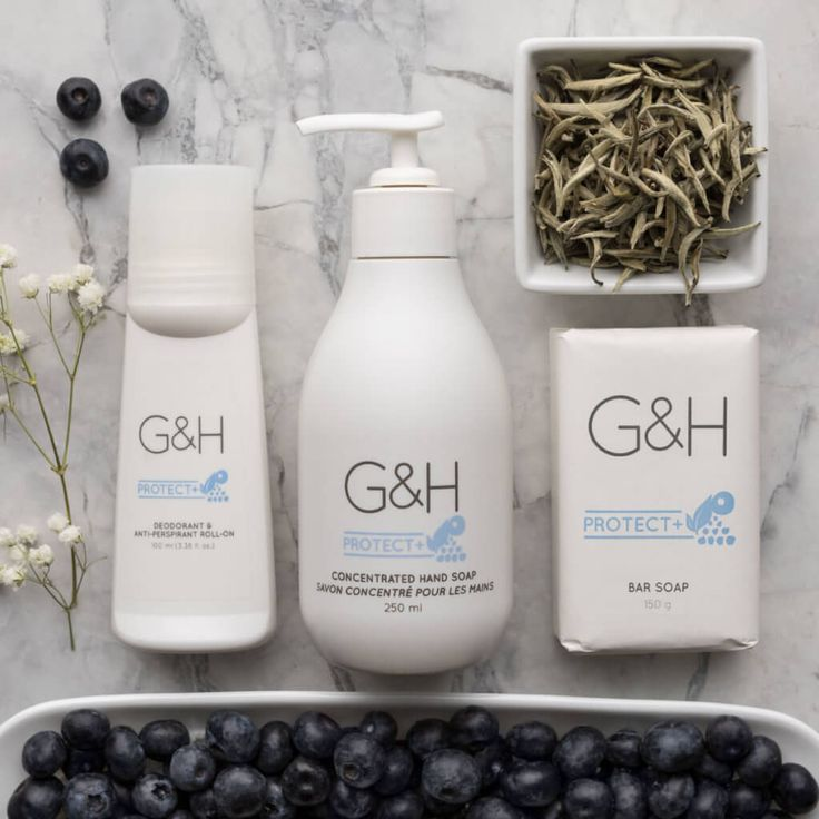 G&H Protect+ products  Www.amway.com/krista Spangler